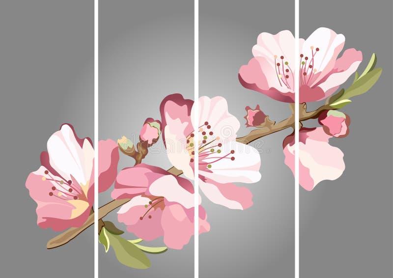 Carta con il ramo sbocciante della ciliegia orientale illustrazione di stock