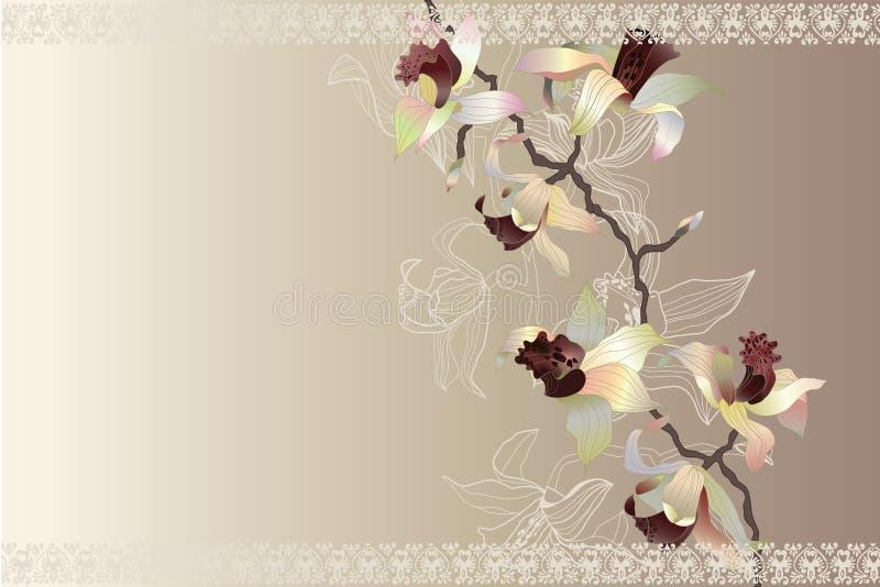 Carta con l'orchidea immagini stock