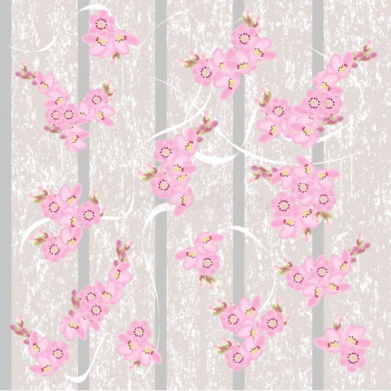 Carta da parati dell'annata con i fiori delle ciliege illustrazione di stock