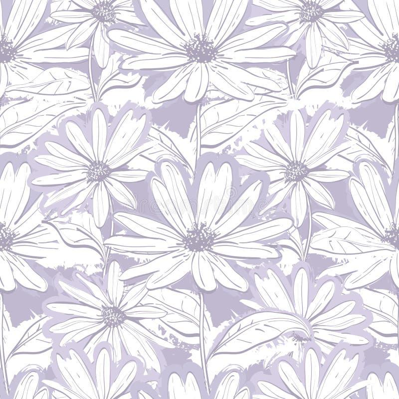 Carta da parati floreale grigia lilla monocromatica, camomille senza cuciture del modello, margherite disegnate a mano immagine stock libera da diritti