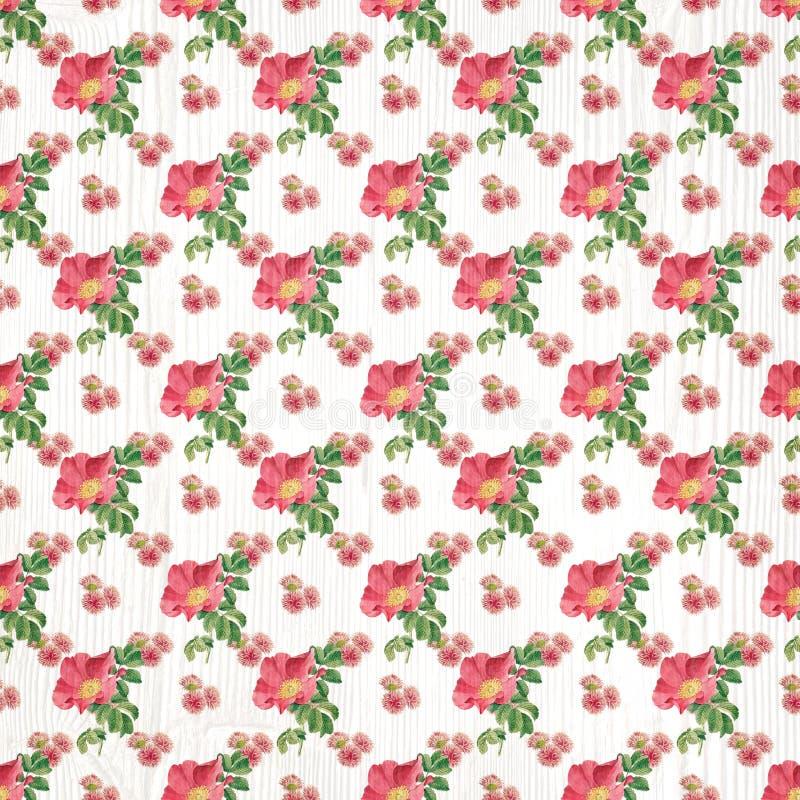 Carta da parati floreale senza cuciture della carta del modello illustrazione vettoriale
