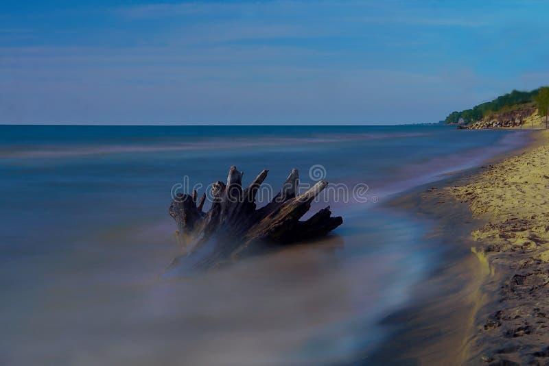 Carta da parati - la spiaggia con un ceppo nell'esposizione lunga immagini stock libere da diritti