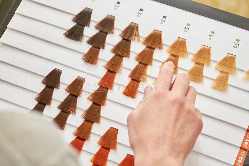 Carta de la muestra del tinte de pelo, mano imagen de archivo libre de regalías