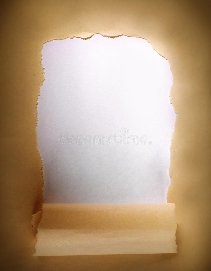 Carta del pacchetto di Brown lacerata rivelare pannello bianco immagine stock