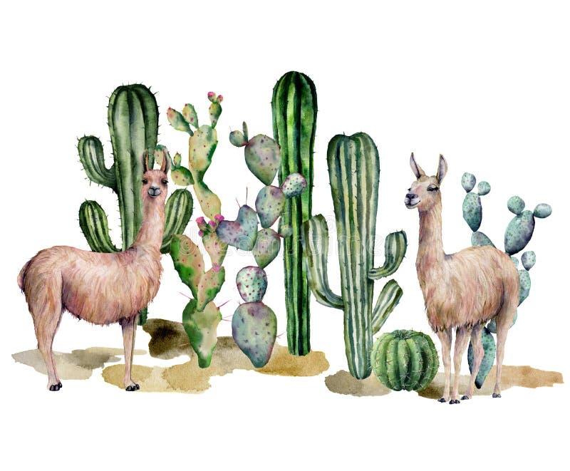 Carta dell'acquerello con il lama ed i cactus Bella illustrazione con gli animali e floreale dipinti a mano su fondo bianco immagine stock