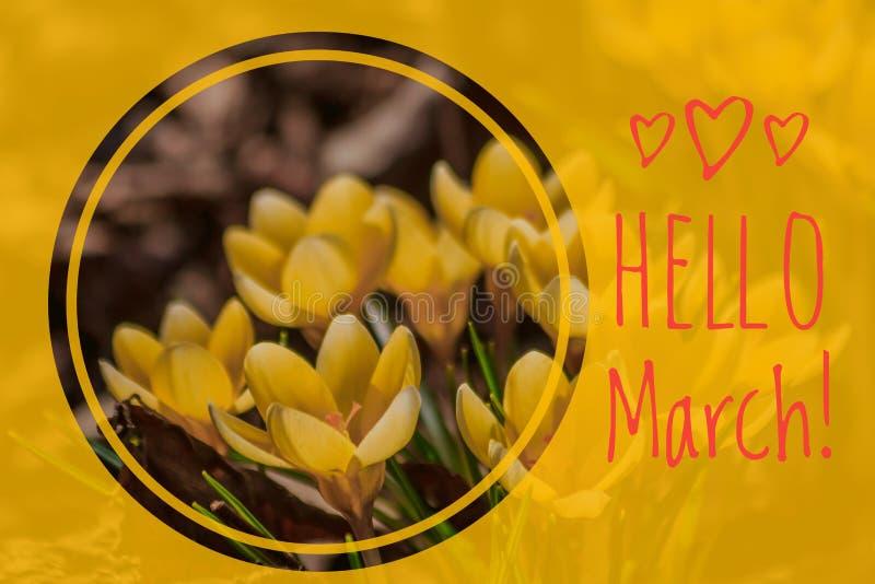 Carta di benvenuto del marzo della cartolina d'auguri ciao l'inizio della molla immagini stock libere da diritti