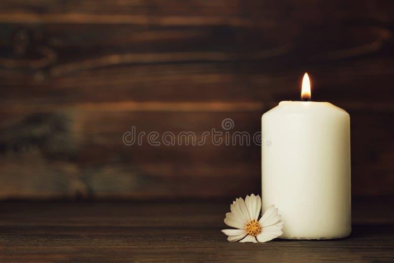 Carta di condoglianza con la candela ed il fiore brucianti bianchi fotografia stock