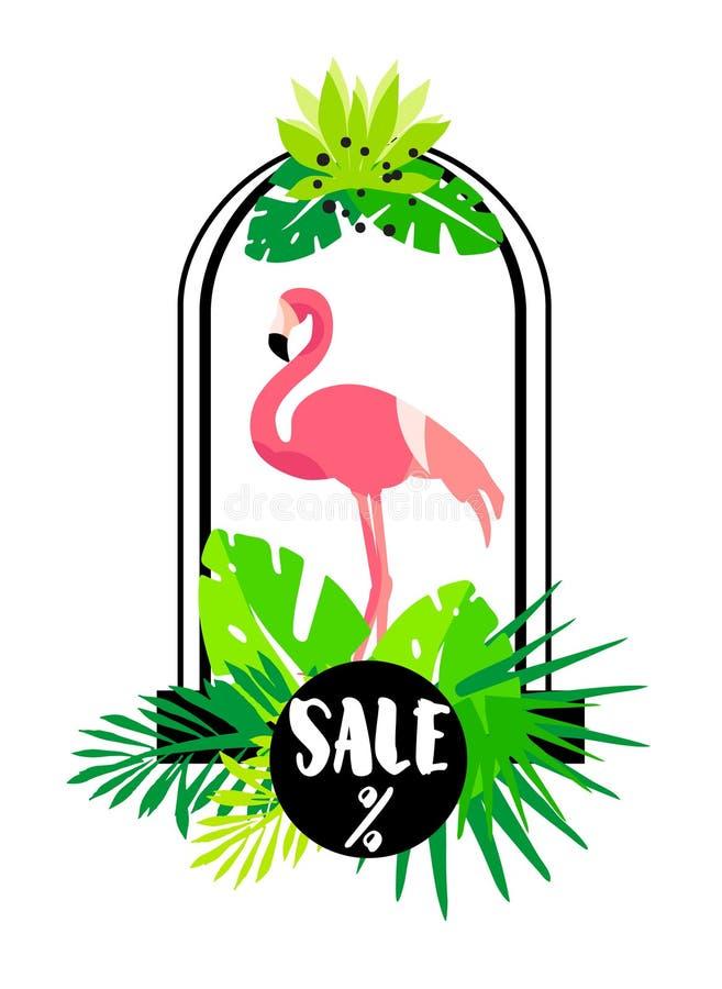 Download Carta Di Estate Con Il Fenicottero, L'arco E Le Piante Tropicali Su Fondo Bianco Progettazione Piana Insegna Di Vettore Da Vender Illustrazione Vettoriale - Illustrazione di uccello, flamingo: 117975512