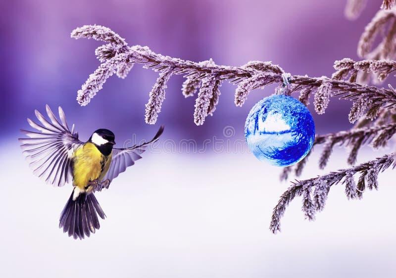 Carta di festa con gli sbattimenti del capezzolo dell'uccello che spandono le sue ali in w immagini stock