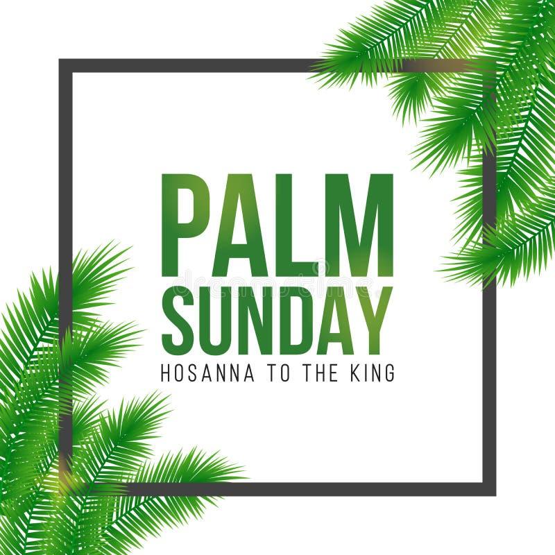 Carta di festa di Domenica delle Palme, manifesto con il confine delle foglie di palma, struttura Fondo di vettore illustrazione di stock