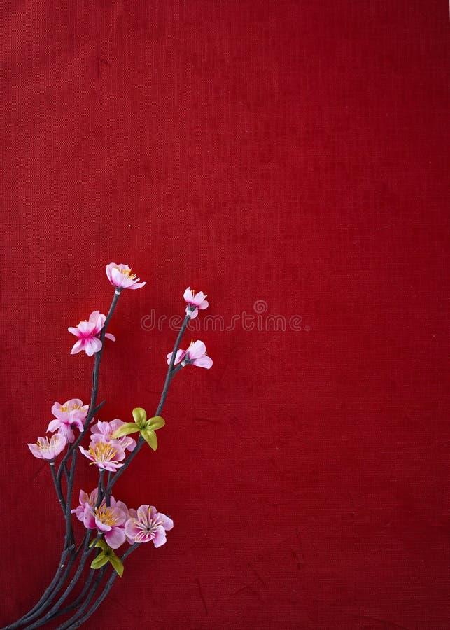 Carta di rosso di Cherry Blossoms On fotografia stock