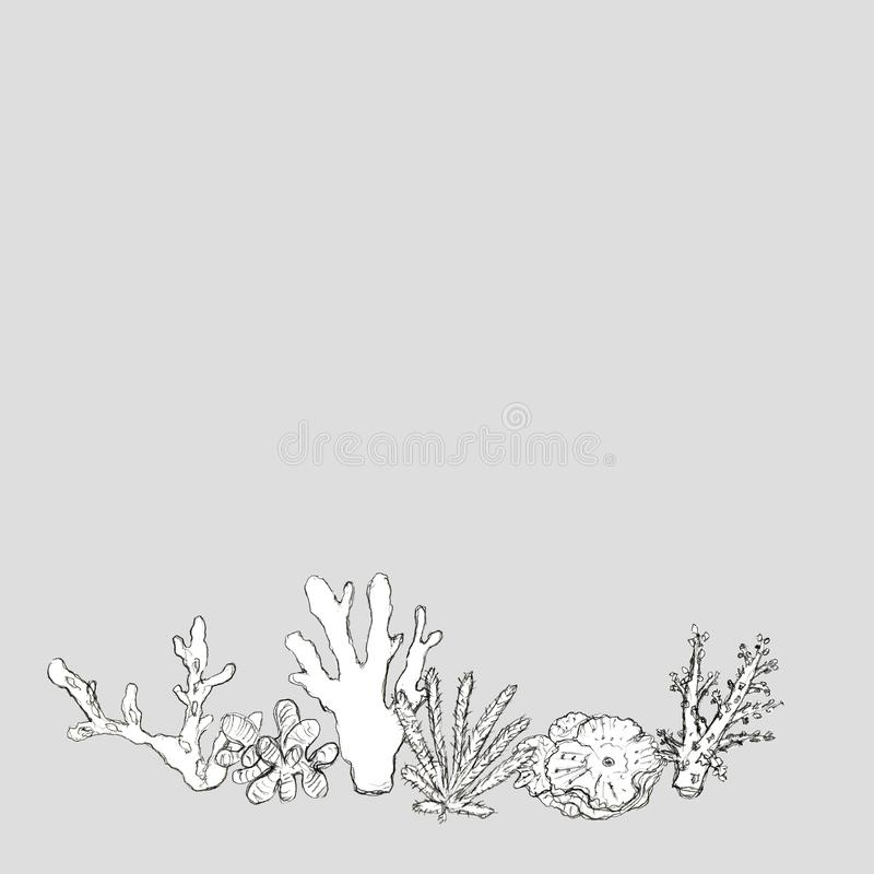 Carta disegnata a mano dei coralli del mare illustrazione vettoriale