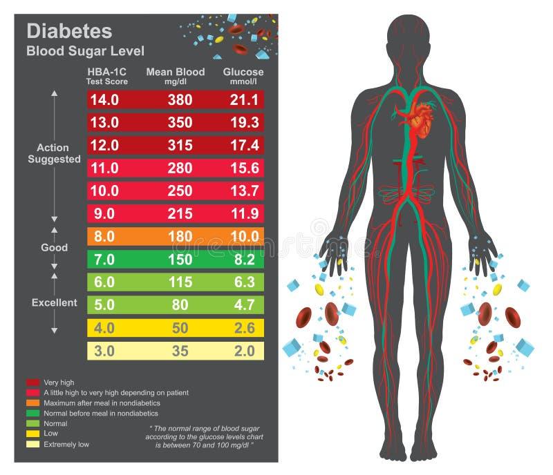 Carta do diabetes Gráfico da informação dos cuidados médicos Projeto do vetor ilustração royalty free