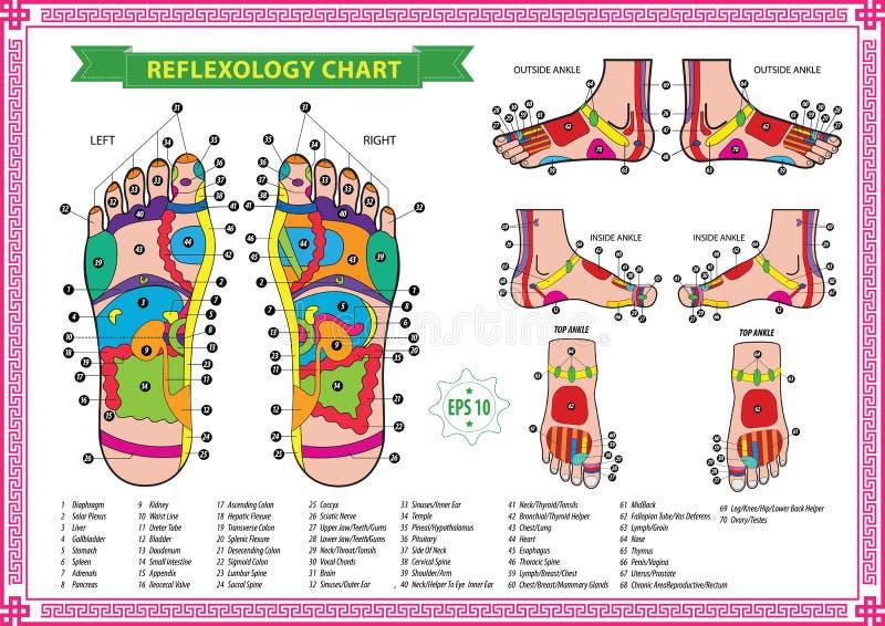 Carta do reflexology do pé ilustração royalty free