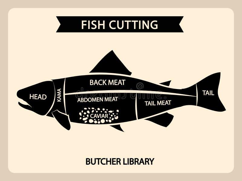 A carta do vintage do vetor do corte da carne de peixes, corta o diagrama do guia ilustração royalty free