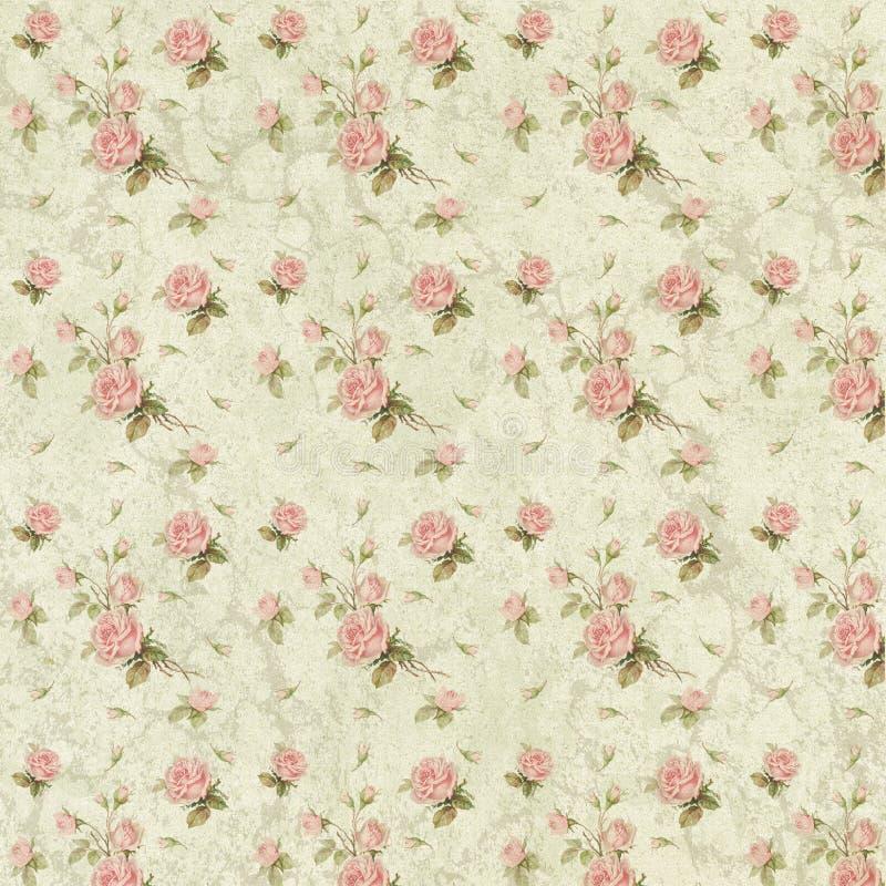 Carta elegante misera del collage del fondo - rose rosa - romantica - femminile illustrazione di stock