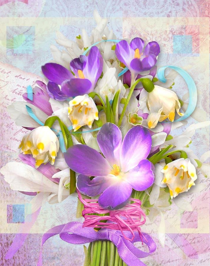 Carta festiva della primavera con le primaverine ed i croco dei fiori immagini stock libere da diritti