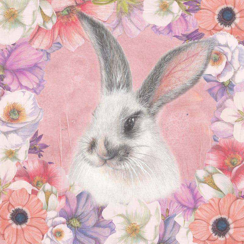 Carta floreale con il coniglietto lanuginoso illustrazione di stock