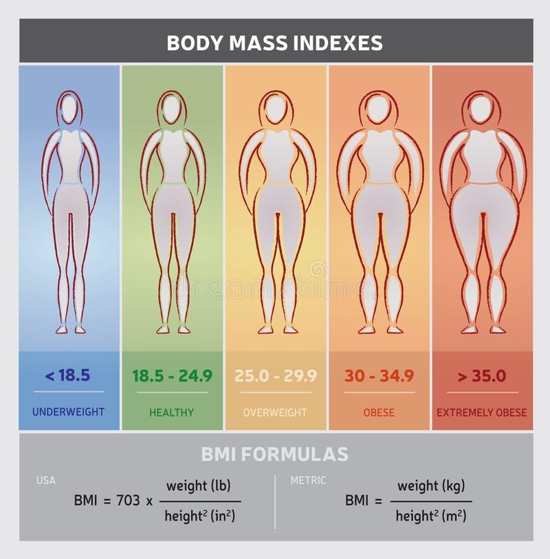 Carta gráfica del diagrama del índice de masa corporal con las siluetas del cuerpo, cinco clases y fórmulas libre illustration