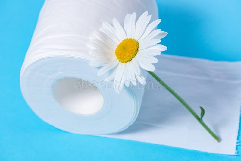 Carta igienica perforata bianca con il profumo e margherita su un fondo blu fotografie stock