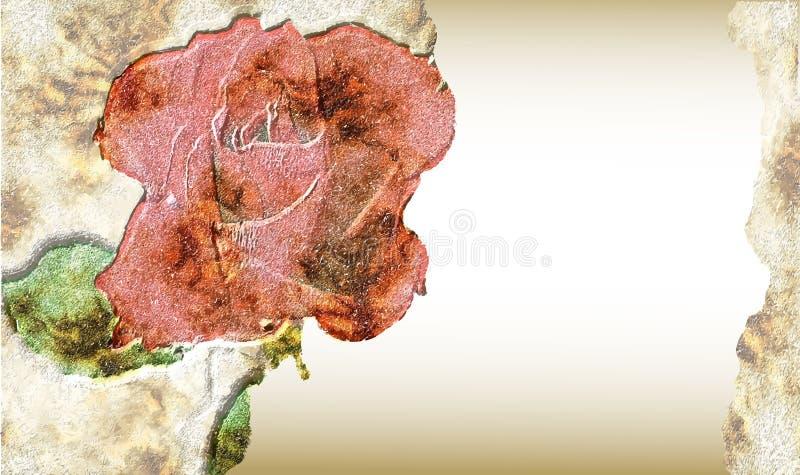 Carta incrinata d'annata con la rosa rossa illustrazione vettoriale