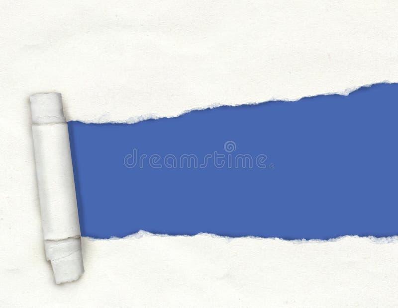 Carta lacerata bianca strutturata con un foro strappato che mostra una parte posteriore del blu immagini stock