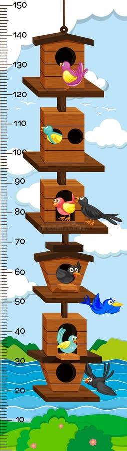Carta mearsuring do crescimento com os pássaros no aviário ilustração royalty free