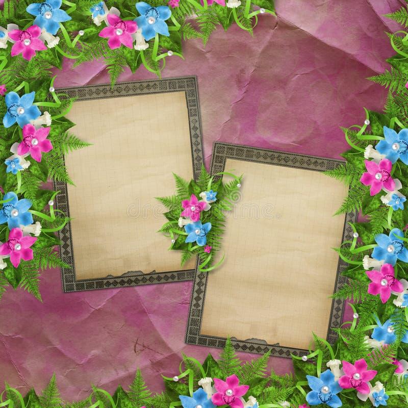 Carta per l'invito o la congratulazione con le orchidee fotografie stock libere da diritti