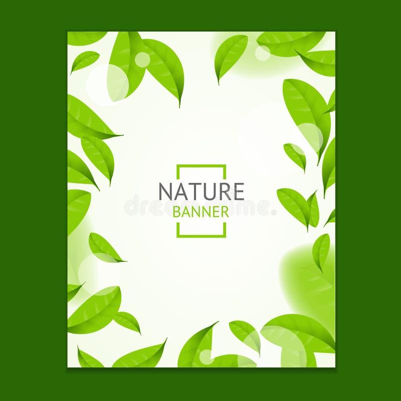 Carta realistica dei manifesti dell'insegna dell'aletta di filatoio delle foglie verdi della mosca Vettore illustrazione vettoriale