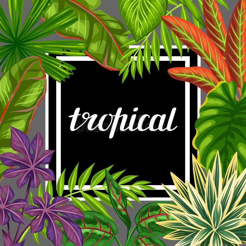 Carta tropicale di paradiso con le piante e le foglie stilizzate Immagine per la pubblicità dei libretti, insegne, flayers royalty illustrazione gratis