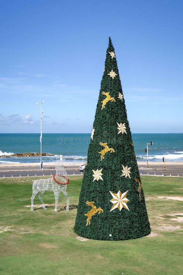 Cartagena de Indias, Bolivar/Colombia, 13 décembre 2017 : Un arbre de Noël décoré et un renne de lumière à Carthagène à l'extérie photo libre de droits