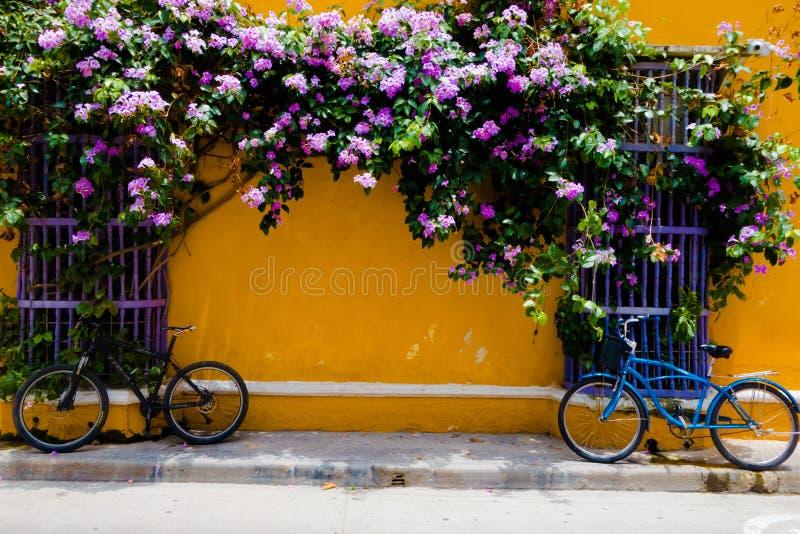 CARTAGENA, KOLUMBIA 22, 2017: Zamyka up rower parkujący przy outdoors w Cartagena miasta ulicie z kolorowymi budynkami fotografia stock