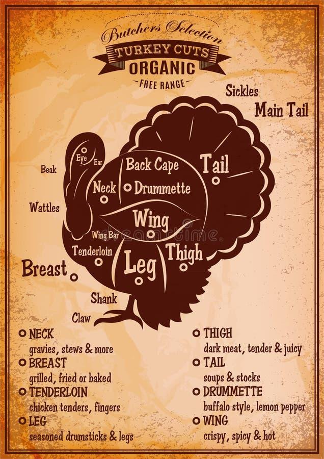 Cartaz com um diagrama detalhado do peru massacrando ilustração do vetor