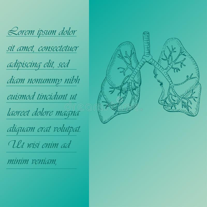 Cartaz de duas seções sobre os pulmões humanos ilustração do vetor