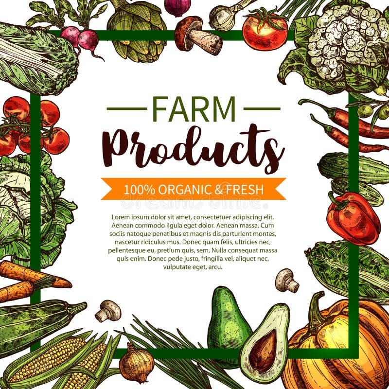 Cartaz do esboço do vetor de vegetais orgânicos da exploração agrícola ilustração do vetor