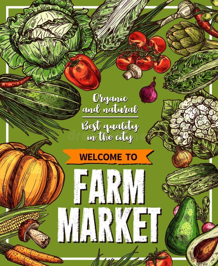 Cartaz do esboço do vetor para vegetais do mercado da exploração agrícola ilustração do vetor