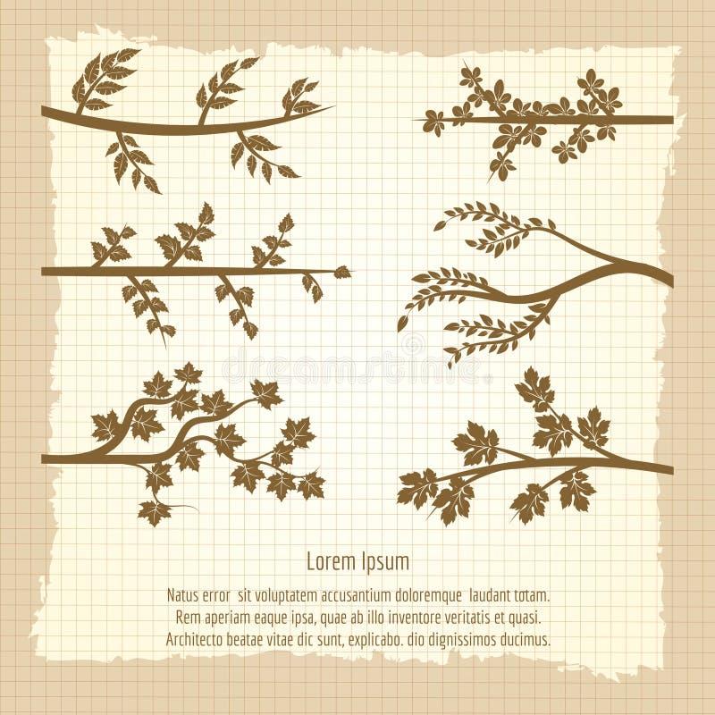 Cartaz do vintage com a silhueta dos ramos de árvore ilustração royalty free