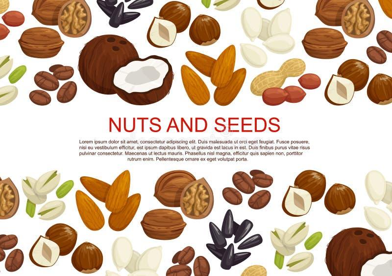 Cartaz dos doces das porcas do vetor e das sementes do fruto ilustração do vetor