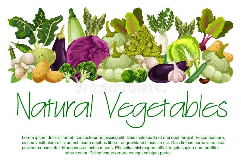 Cartaz natural do alimento biológico dos vegetais do vetor ilustração do vetor