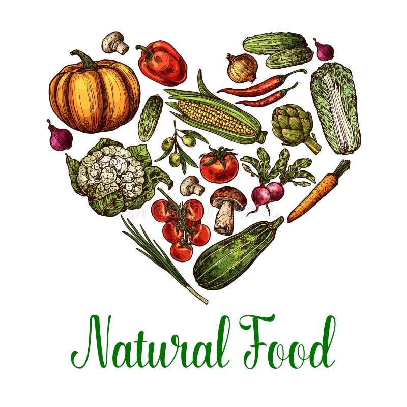 Cartaz natural do coração do esboço do alimento dos vegetais do vetor ilustração royalty free