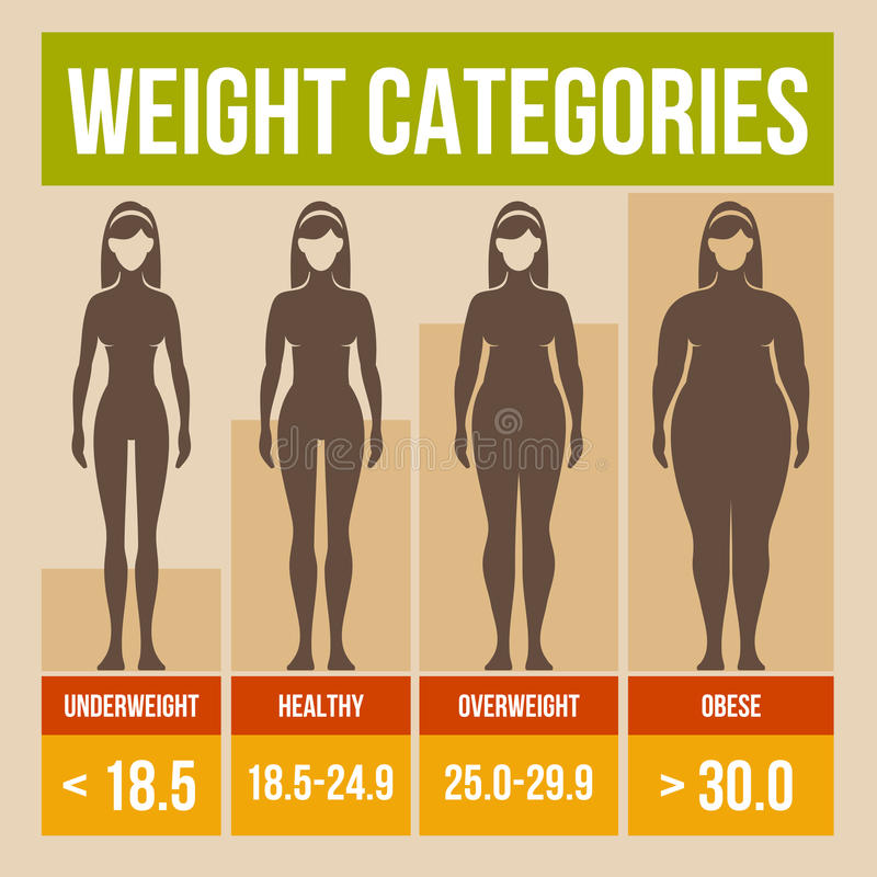Cartaz retro do índice de massa corporal. ilustração royalty free