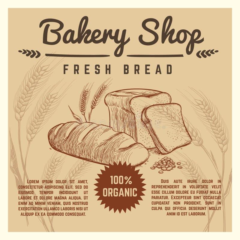 Cartaz retro do vetor da loja da padaria com as orelhas tiradas mão do trigo ilustração do vetor