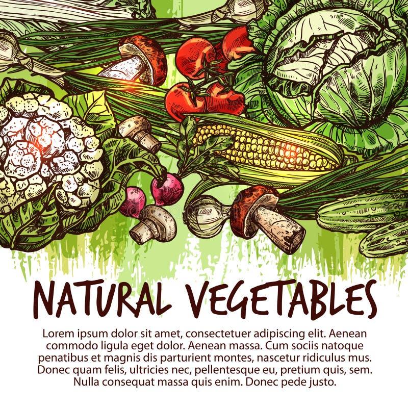 Cartaz vegetal com vegetarianos e esboço do cogumelo ilustração stock
