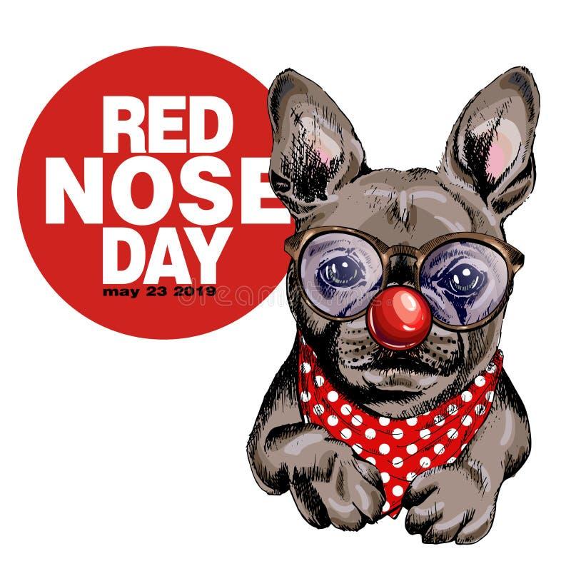 Cartaz vermelho do dia do nariz Retrato tirado mão do cão do vetor Vidros do buldogue francês, nariz do palhaço e bandana vestind ilustração do vetor