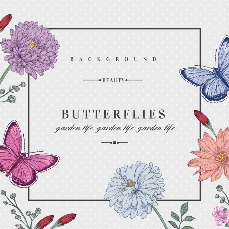 Carte avec deux papillons illustration stock