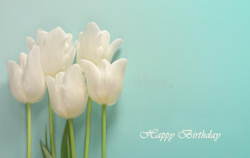Carte d'anniversaire Tulipes blanches sur un fond clair de turquoise photographie stock libre de droits