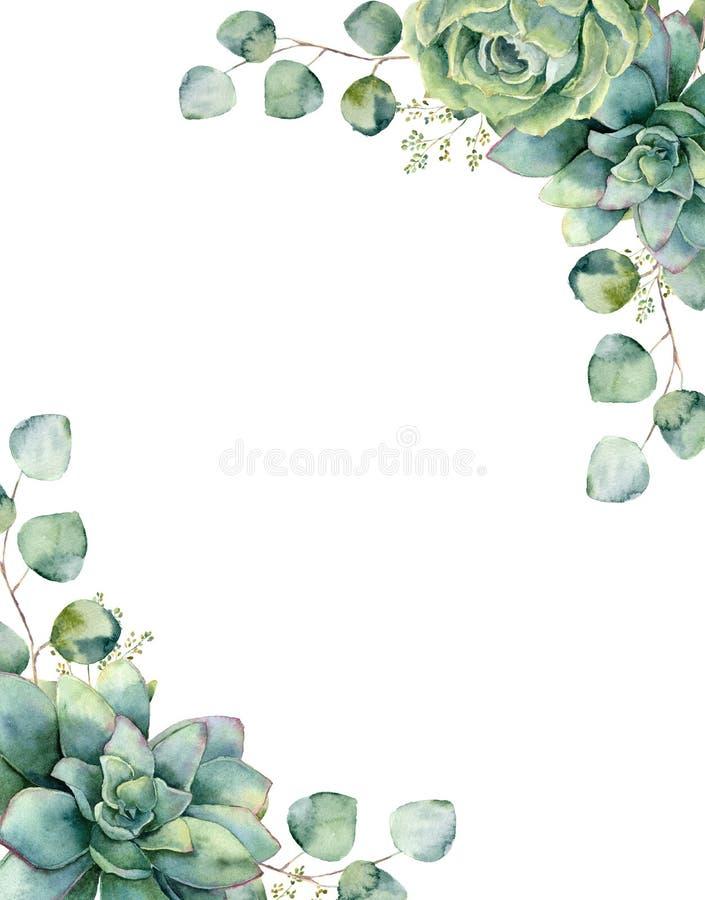 Carte d'aquarelle avec le bouquet exotique Branche d'eucalyptus et feuilles peintes à la main, succulents verts d'isolement sur l illustration de vecteur