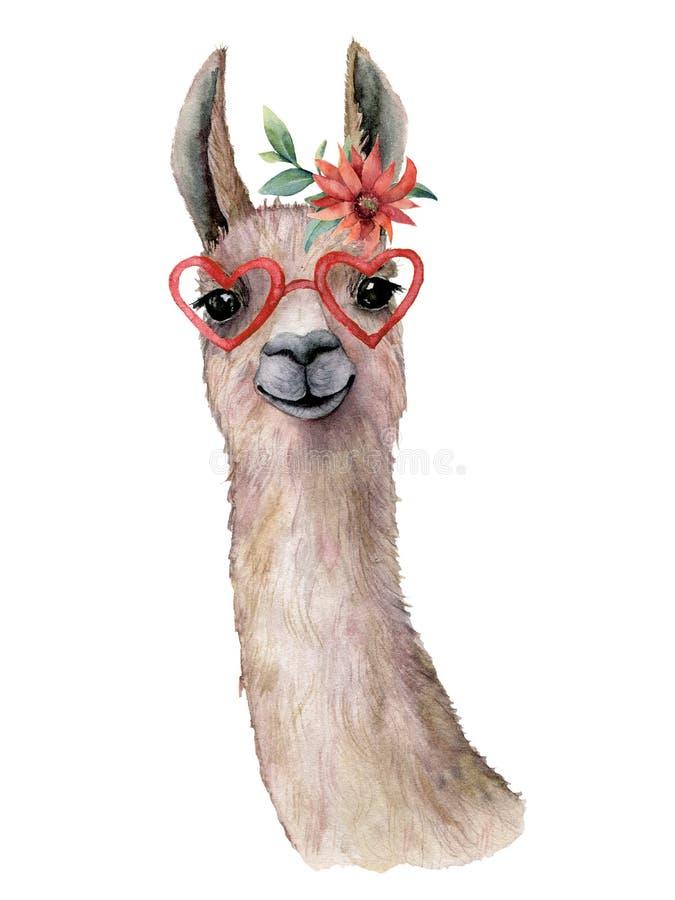 Carte d'aquarelle avec le lama, la fleur et les lunettes de soleil Belle illustration peinte à la main avec la fleur animale et r illustration libre de droits