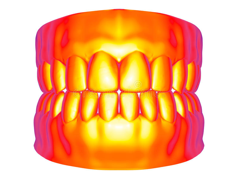 Carte de bruyère - dentier illustration de vecteur