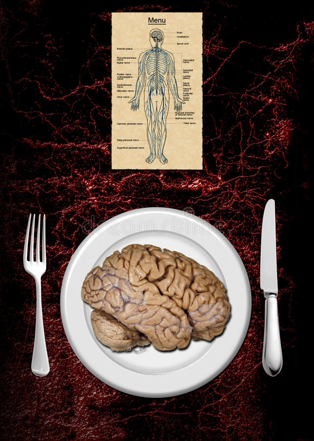 Carte de cerveau photographie stock libre de droits